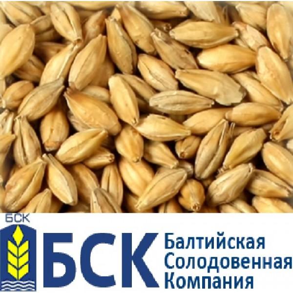 Солод Пилсен А ячменный светлый БСК 5 EBC,  1 кг