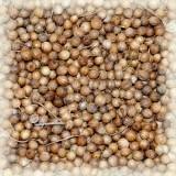 Кориандр (в зернах) 50 гр.